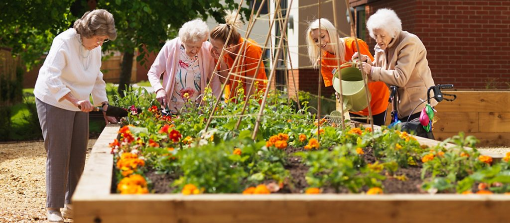 Resdients and carers tending to the plants in the raised flower beds in the garden
