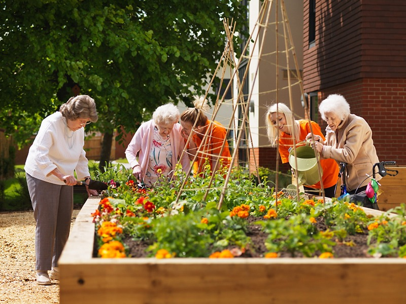 Carer and residents tending to raised garden beds